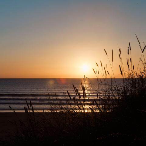 The beautiful local beach, stunning at sunrise - Sadie Ferriday
