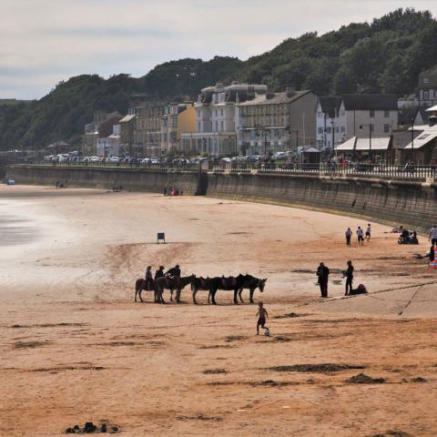 Donkeys on Filey Beach - Ian Nisbet
