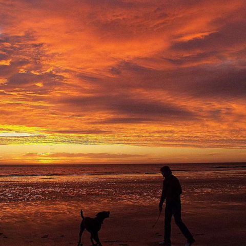 Sunset - Peter Salvage
