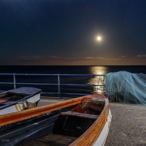 Moonlit Boats - David Eccles