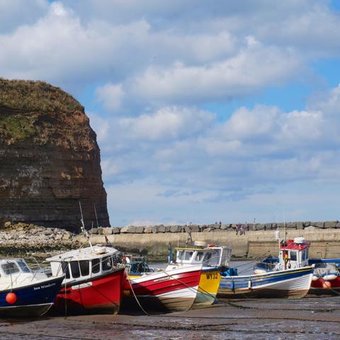 Staithes harbour - Tony Bartholomew